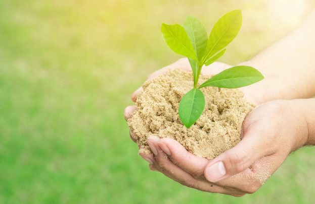 sustentabilidade-empresarial-2